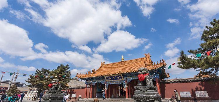 2020呼和浩特旅遊攻略-呼和浩特景點地圖-內蒙古自由行旅遊指南-Trip.com