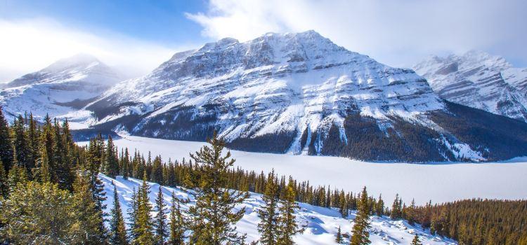 2020加拿大旅遊攻略-加拿大景點地圖-北美洲自由行旅遊指南-Trip.com