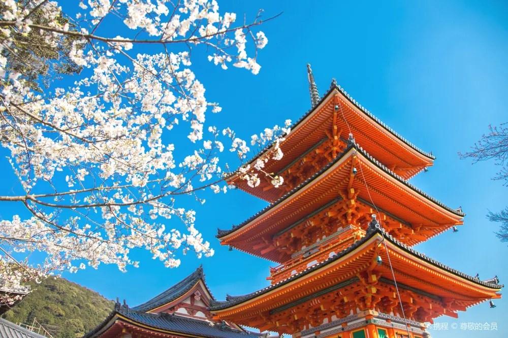 日本京都+奈良+大阪一日遊(一人成團)   Trip.com
