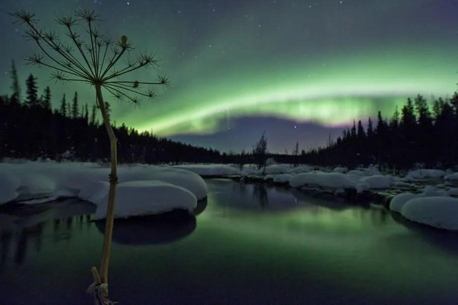 在加拿大育空地區首府白馬市Whitehorse追尋最美北極光 - 加拿大游記攻略【攜程攻略】