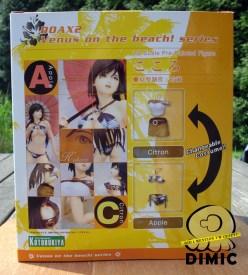 Kotobukiya - Dead or Alive: Xtreme2 - Kokoro