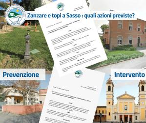 Zanzare e topi a Sasso: prevenzioni e interventi