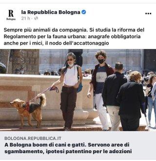 Repubblica Sgambamento