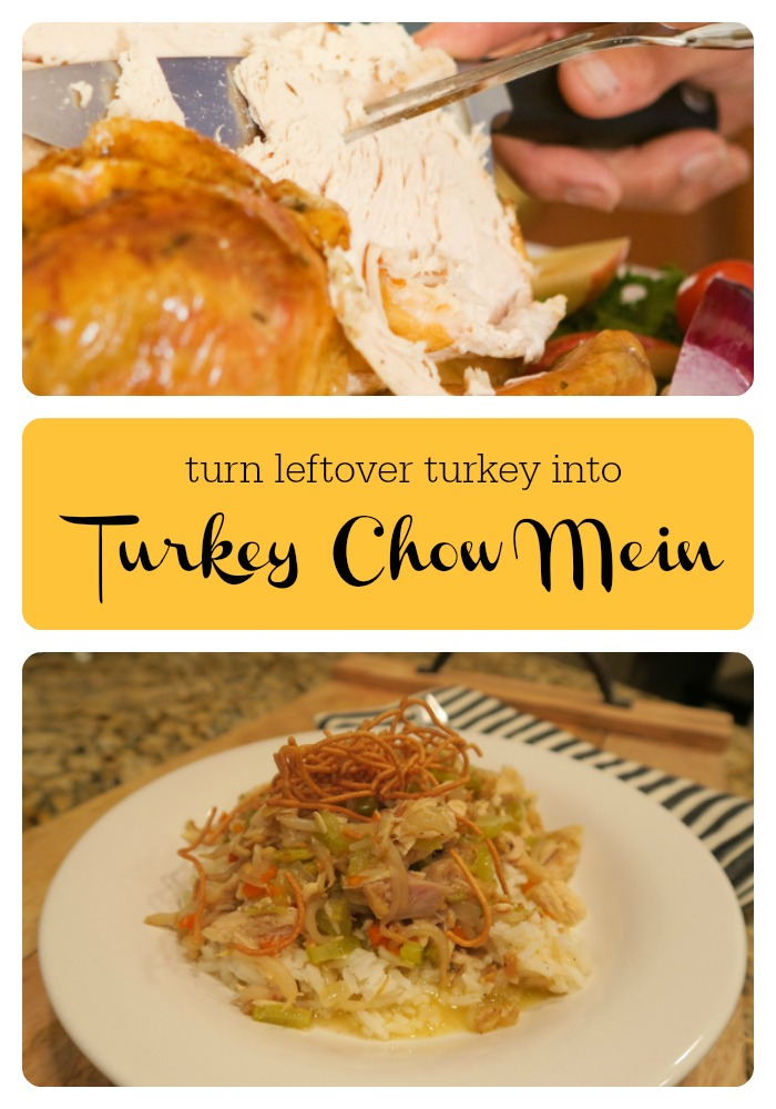 Left Over Turkey Recipes | Turkey Chow Mein | Recipes with Leftover Turkey