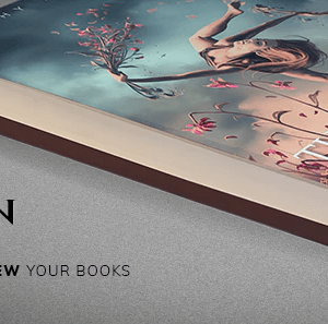 JUAL Odrin - Book Selling WordPress Theme for Writers and Authors