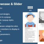 WP Team Showcase and Slider By WpOnlineSupport