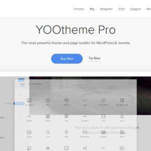 JUAL YOOtheme Pro - Powerful theme and page builder for WordPress
