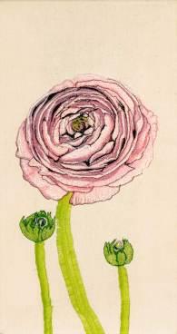 Dina-Rautenberg-Dinaeht-Rose