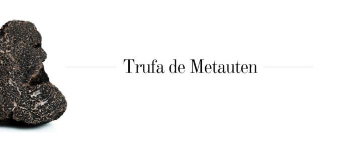 Tierra Estella: Día 3, Museo de la Trufa en Metauten