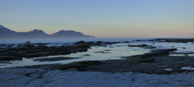 Día 12, Isla Sur de costa a costa, Punakaiki – Kaikoura