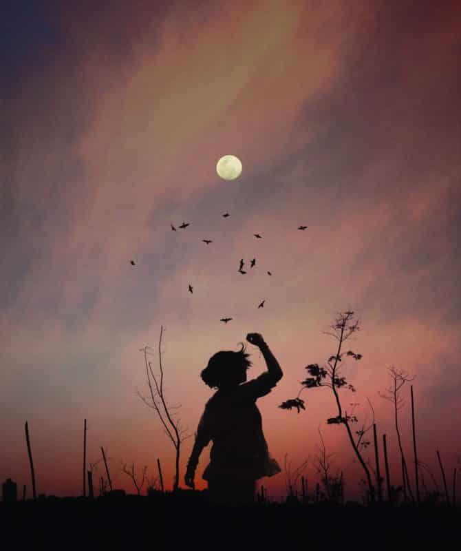 foto keren untuk profil whatsapp instagram telegram tiktok facebook line siluet orang perempuan/wanita/cewek memakai topi sore hari di rerumputan dengan bulan, burung, dan langit berwarna ungu