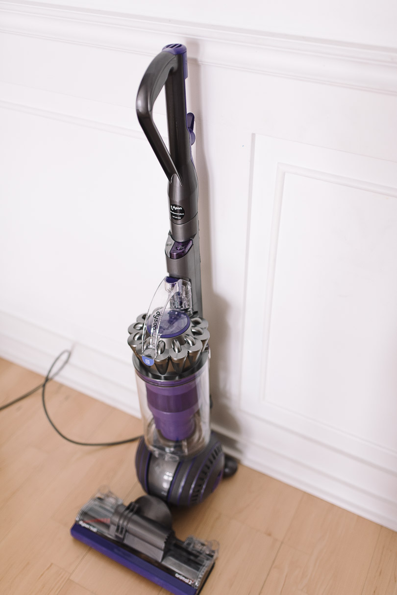 Side profile of Dyson Ball Animal 2