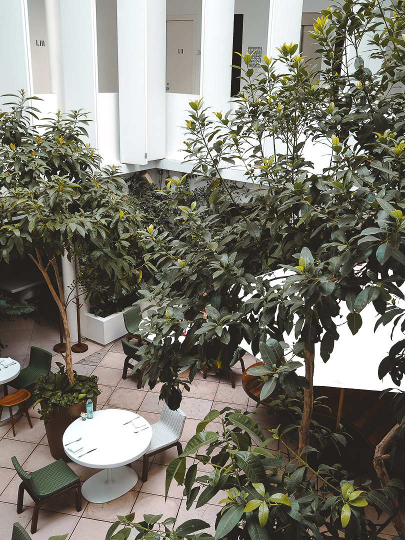 Aerial view of courtyard at Condesa DF