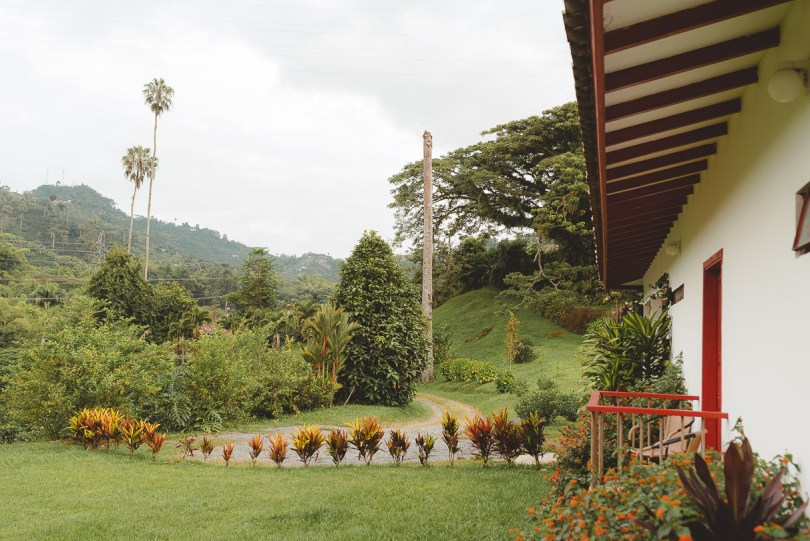 coffee sustainable colombia