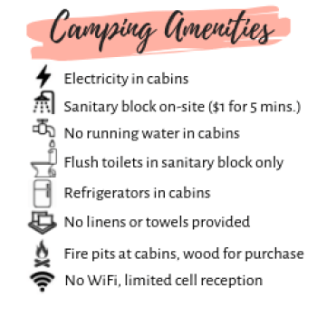 amenities at Camping du Domaine Lausanne
