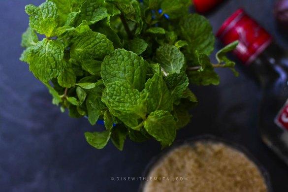 Fresh mint for the Chilli-Ginger-Mojito