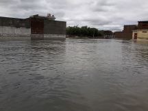 dinga-flood (3)
