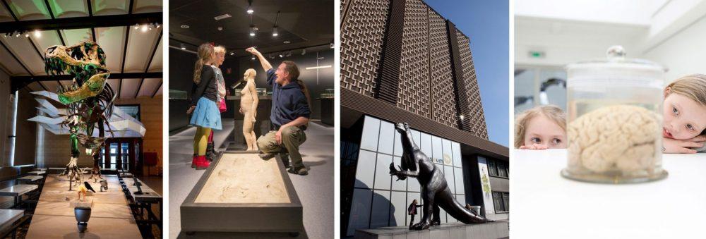 Brussel met kinderen / Brussels with kids: Museum voor Natuurwetenschappen Brussel