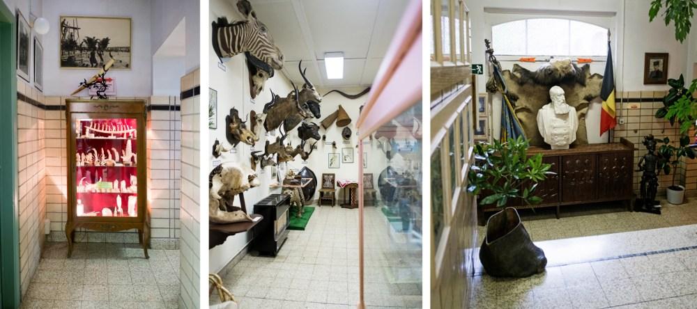 Herfstvakantie in de Ardennen_Afrika museum