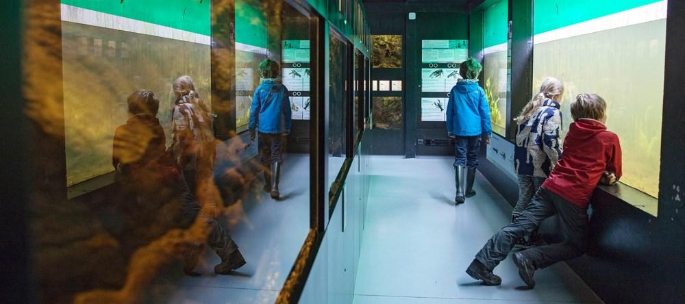 Interactief museum Riveo