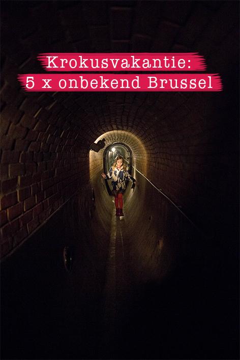 Krokusvakantie: citytrip 5x onbekend Brussel