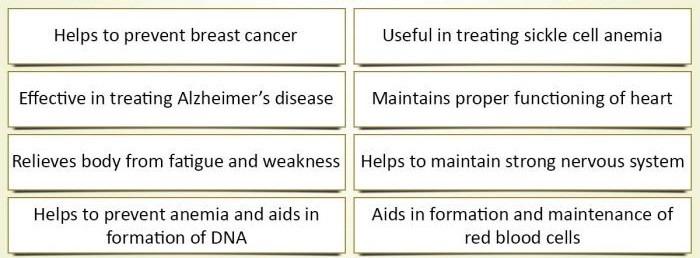 Benefits-of-Vitamin B12