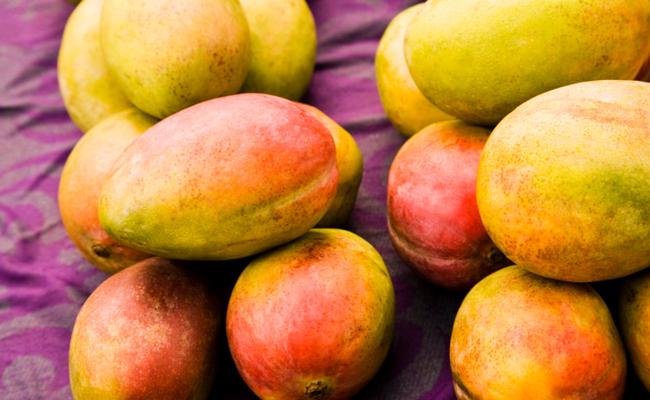 Health Benefits  Mangos