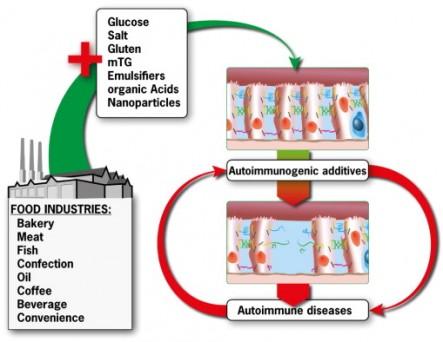 food additives and autoimmunty