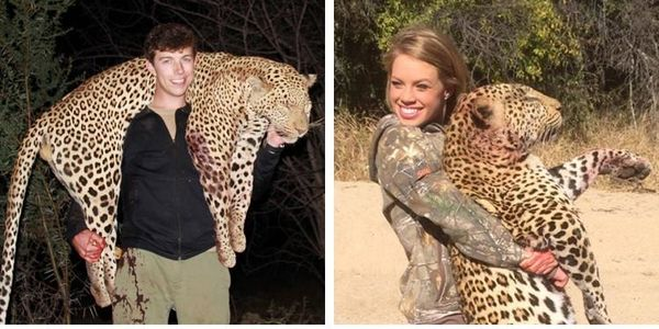 DEMAND AN END TO TROPHY HUNTING WILD ANIMALS