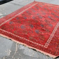 Turkoman Tribal Large Bukhara Rug