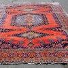 Vis Caucasian Iran