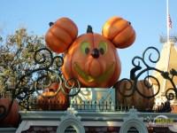 Mystical Spirits of the Blue Bayou experience at Disneyland