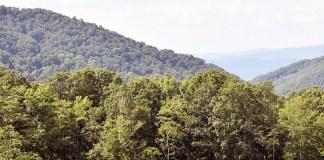 Natural Retreats Hot Springs, VA