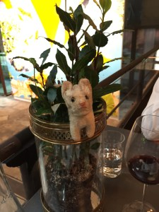 Frankie liked hanging out in the table plant