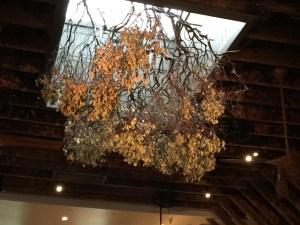 Interesting ceiling treatment