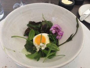 Egg and fresh greens