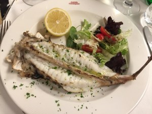 Grilled monkfish with salad
