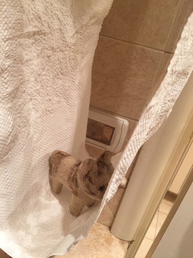 She played in the old fashioned towel dispenser