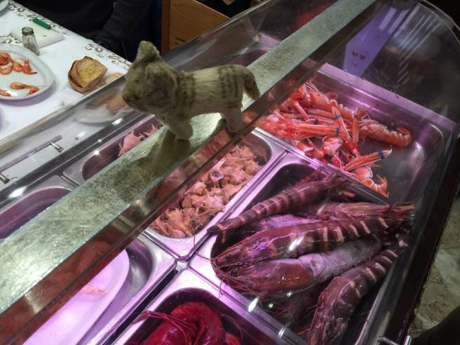 Frankie studied the giant prawns