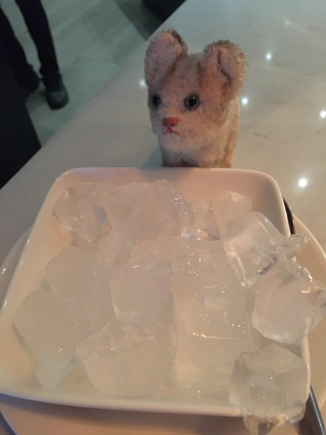Frankie played with my ice