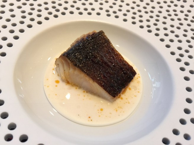 Black cod, grilled over the coals, sauce of yogurt and citrus leaves