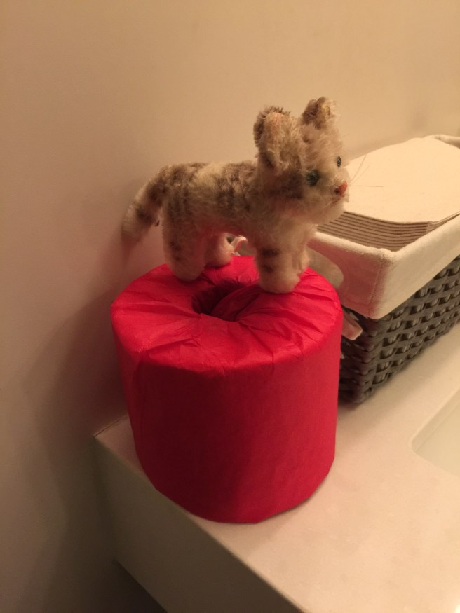 Frankie liked the red wrapped toilet paper