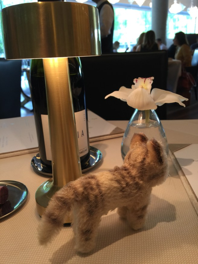 Frankie checked out the table lamp and orchid