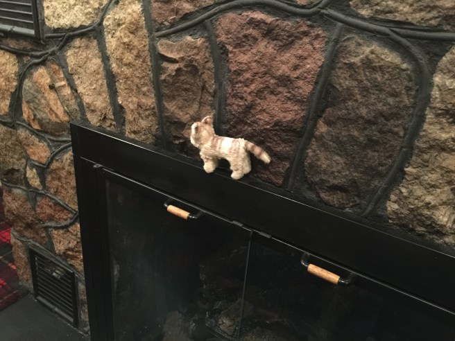 Frankie checked out the fireplace