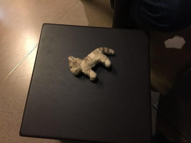 Frankie took a nap on the purse stool