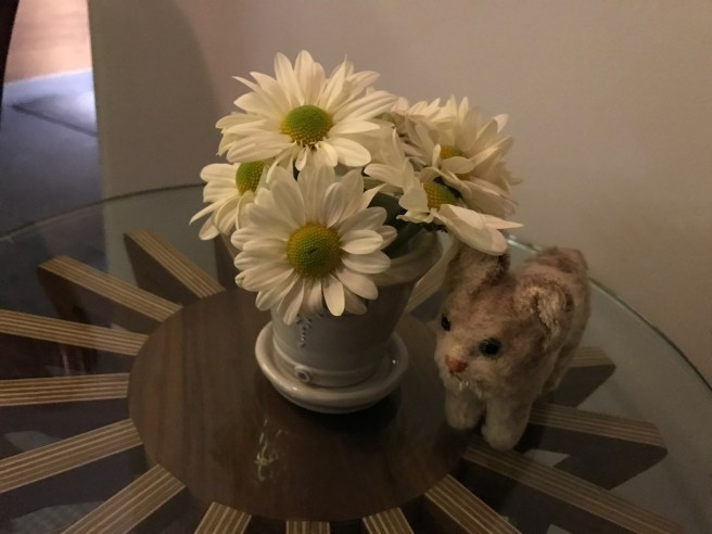 Frankie found some flowers
