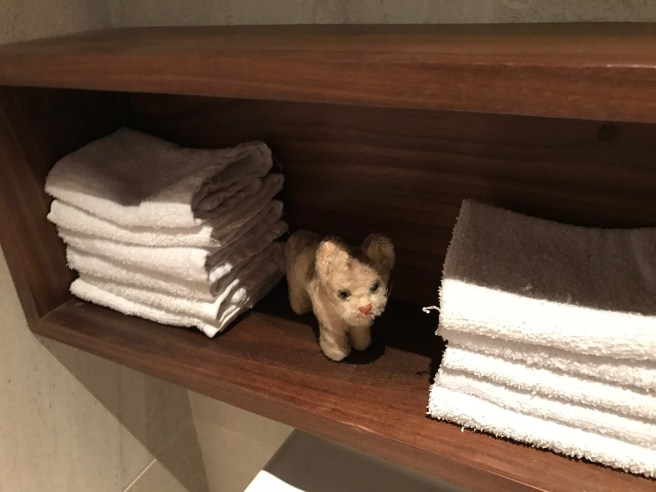 Frankie found the towels in the bathroom