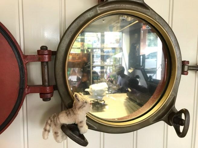 Frankie played on the porthole