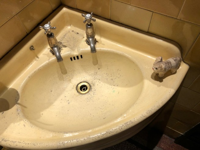 Frankie thought it looked like an old sink