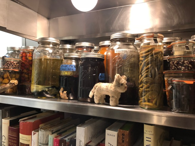 Frankie checked out the jars